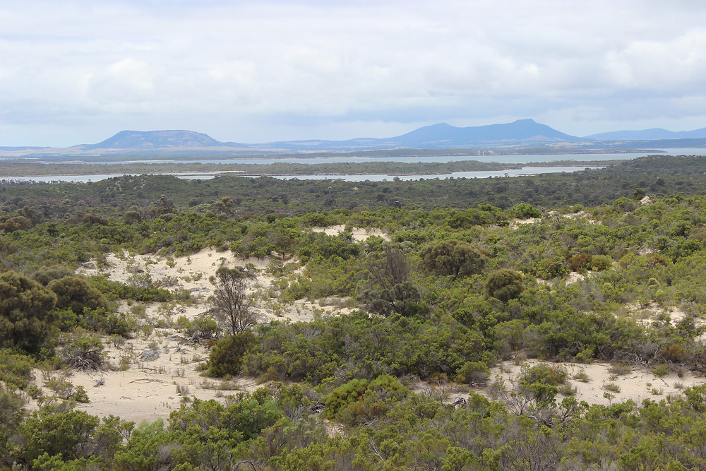 Coffin Bay NP