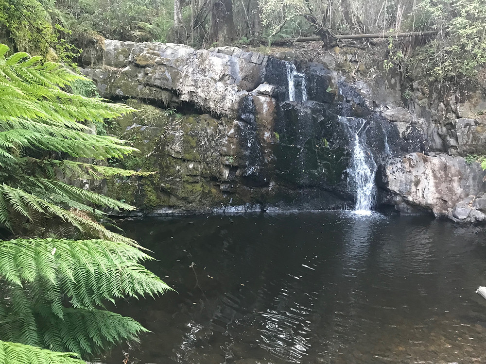 Lilydale Second Falls