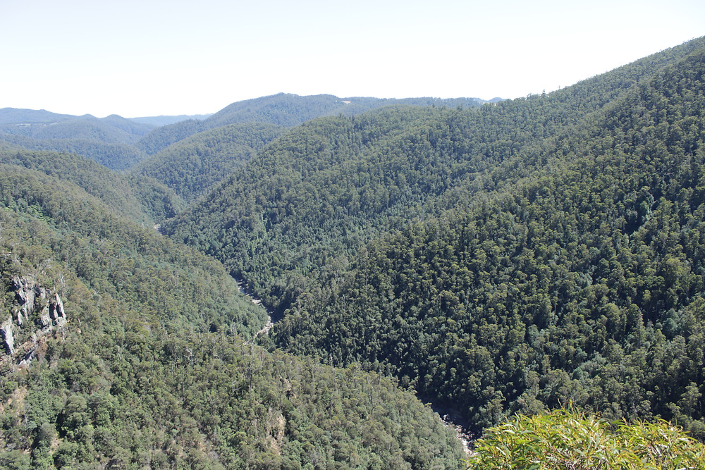 Leven Canyon