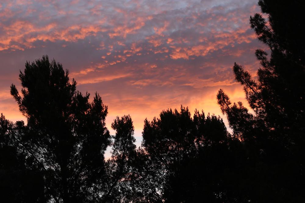 The light at dusk in Bordertown