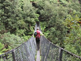 Blog 8: Tasmania - Zeehan to Geeveston