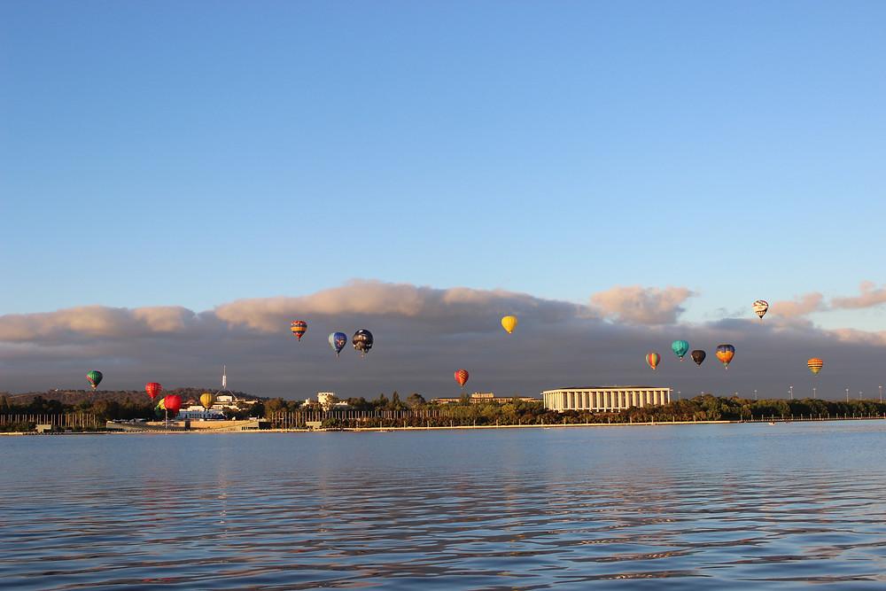 A Herd of Balloons
