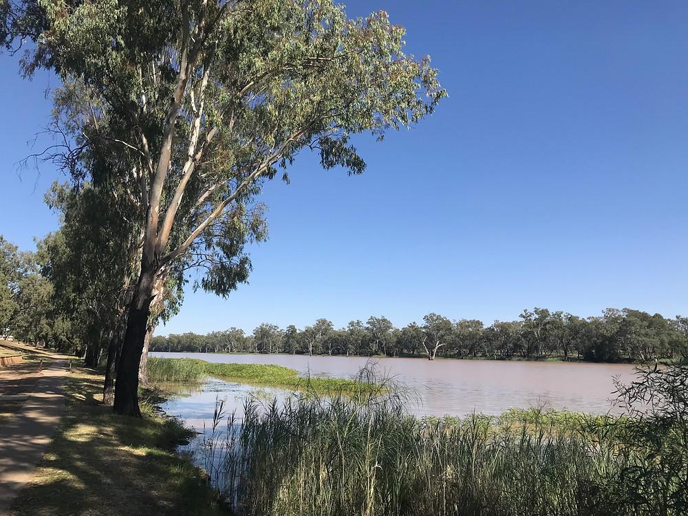 The Balonne River