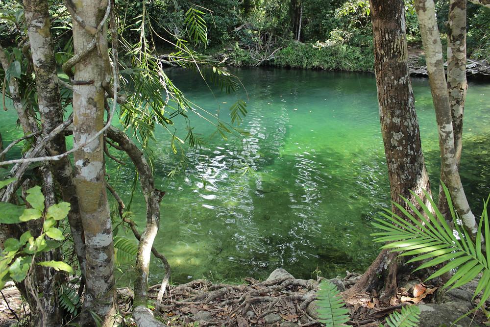 Stunning green water at Babinda Boulders