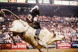 2016-Professional-Bull-Riders-PBR-Built-