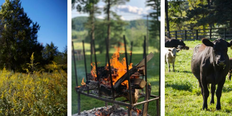 Open-Fire Farm Experience