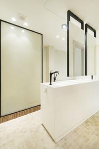 privacy-glass-bathroom2jpg