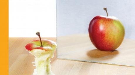 A prática da terapia cognitivo-comportamental - Obesidade e Transtorno Alimentar