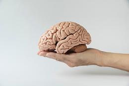 EaD - Cognitivos
