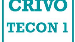 Tecon 1 Crivo de Correção - BGFM-2