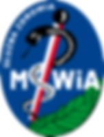 logo_mswia.png