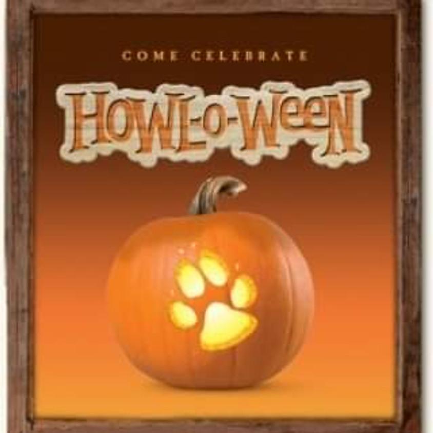 Howloween Event and Pumpkin Patch
