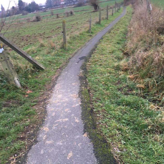 narrow between farm fields paths