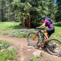 Breck Epic Virtual