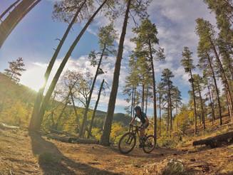 Mountain Bike Season Update #4 | Whiskey Off Road