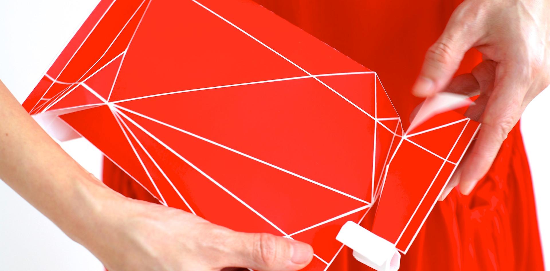 Step 5 PLIC PACK N°001 VACHE