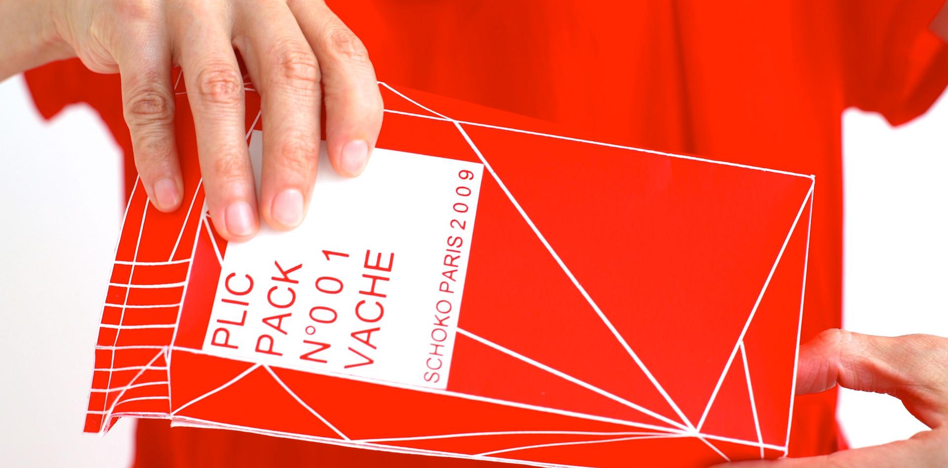 Step 3 PLIC PACK N°001 VACHE