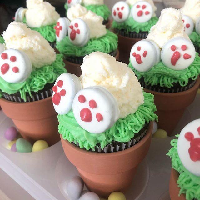 Bunny Bum Cupcakes!