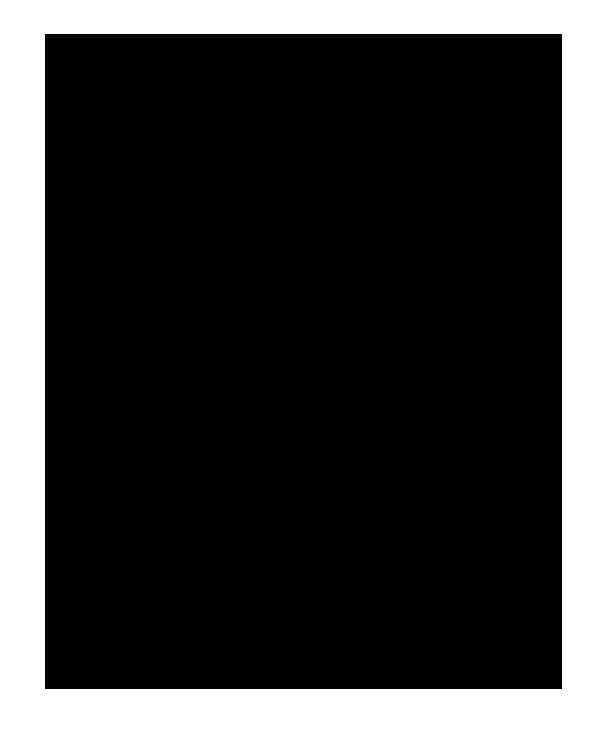 Baia Visió Logo