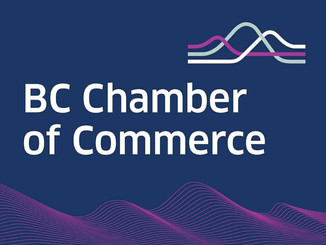 BC Chamber of Commerce offers extensive support in connecting business to Government resources - lin