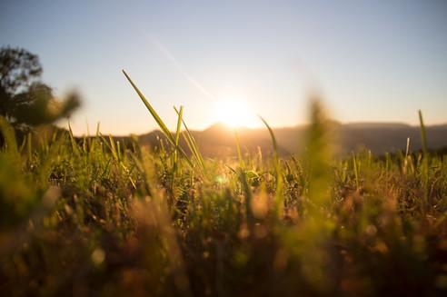 sunrise-1668423_1280.jpg