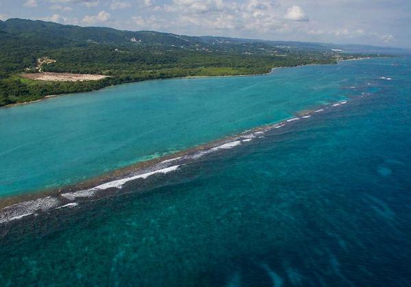 reef view jammaica.JPG