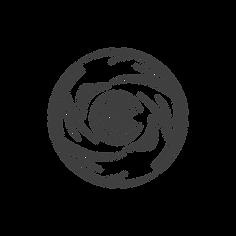 roots_visual_logo.png