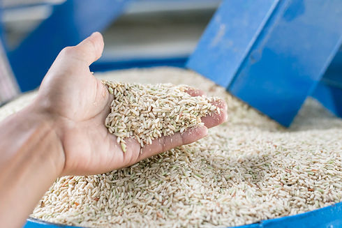 Some part of rice mill machine during wo