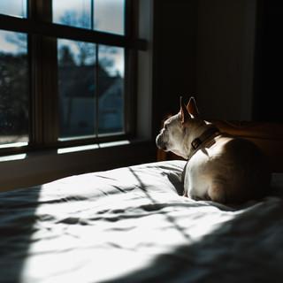 bed macie-1.jpg