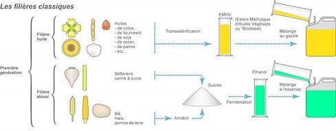 biocarburant_1ereg_0.jpg