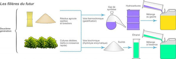 biocarburant_2emeg_2.jpg