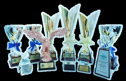 Singapore Property Agent - Derek Woo - Awards