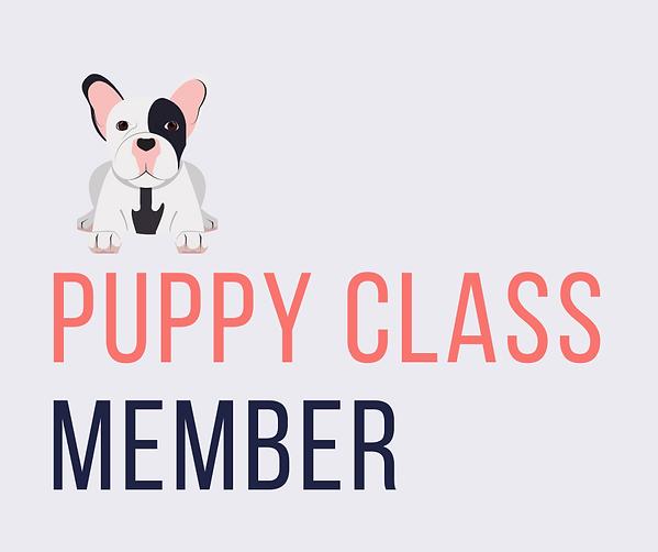 Super puppy online (1) copy 9.png