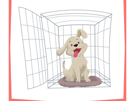 Crate Training - The Easy Approach To Teaching Your Puppy To LOVE Their Crate