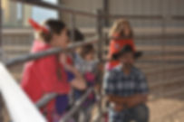 white horse youth ranch, hours of operation, horse therapy