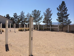 white horse youth ranch, why ranch, our new property, socially challenged children, horse therapy