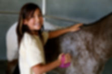 why ranch, our program, horse therapy, youth organizations, nonprofit, las vegas, horsemanship