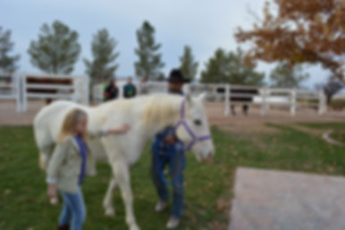 WHY Ranch, socially challenged children, horse therapy, youth organizations, nonprofit, las vegas