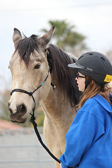 why ranch, socially challenged children, horse therapy, volunteer, youth organization, nonprofit, las vegas
