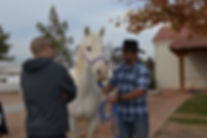 white horse youth ranch, why ranch, horse therapy, equine therapy