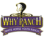 white horse youth ranch, why ranch, horse therapy, equine therapy, socially challenged children