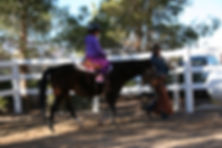 white horse youth ranch, horse therapy, youth organizations, nonprofit, las vegas