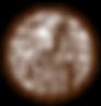 sc_spicenog_hg_18 (1) copy 2.png