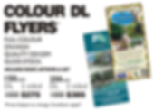 colour dl flyers with high quality cmyk gloss stock