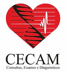 CECAM logo vertic.jpg