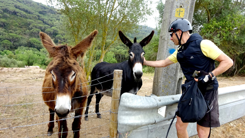Our guide, Jorge, says hello to some friendly donkeys. They were very curious and came up to the fence to say hello