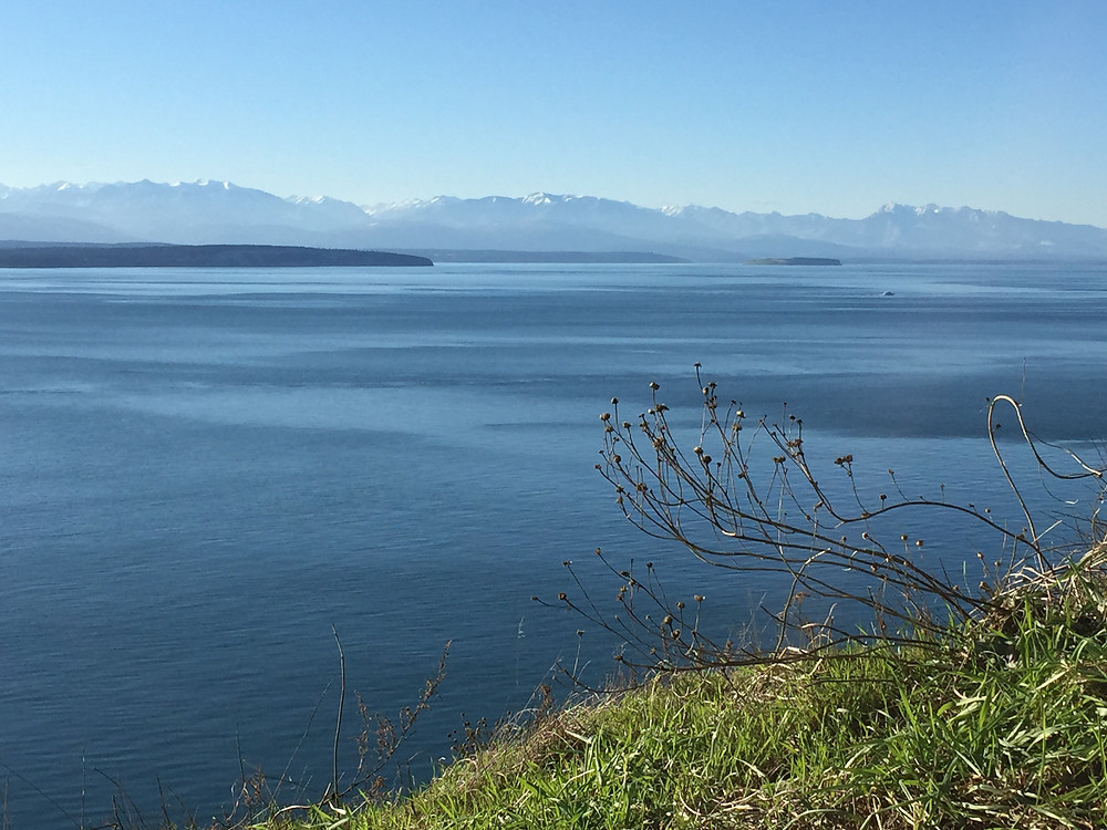 Views of Puget Sound and the Olympic Mountains from Fort Ebey State Park by Coupeville on Whidbey Island