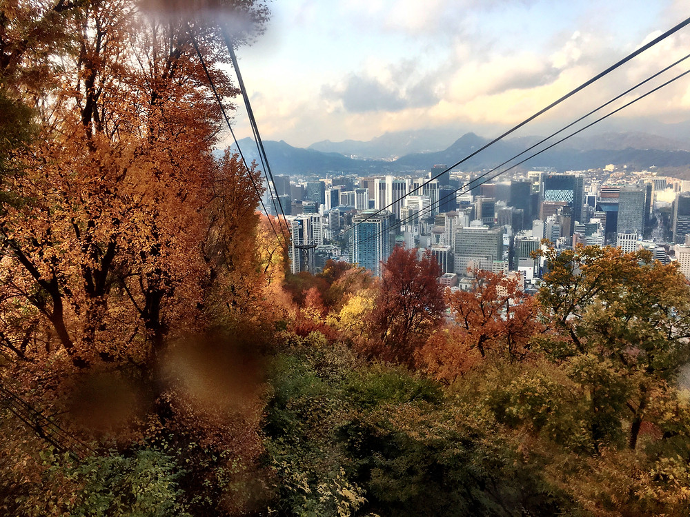 View from cable car on Mt. Namsan, looking down at downtown Seoul and fall-colored leaves on the trees