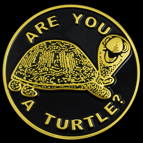 Are You A Turtle Car Badge