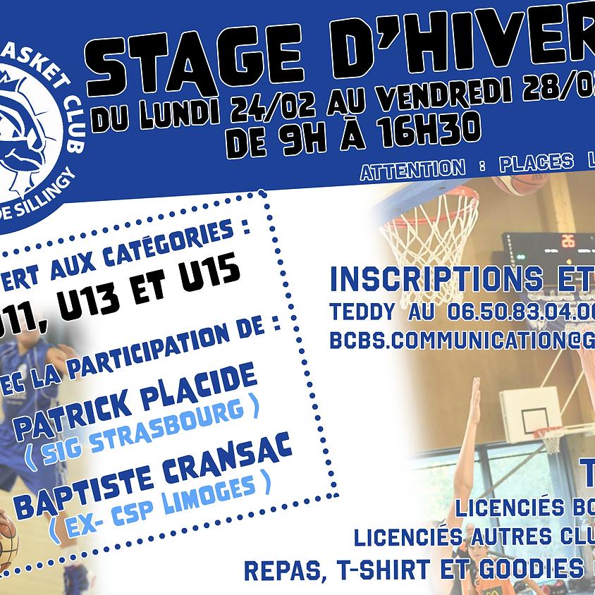 Stage d'hiver BCBS U11, U13 et U15